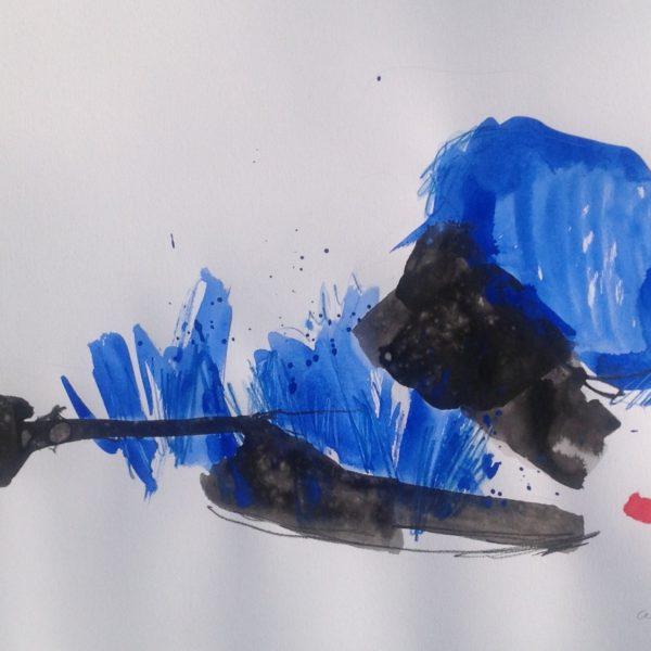 blauw-zwart