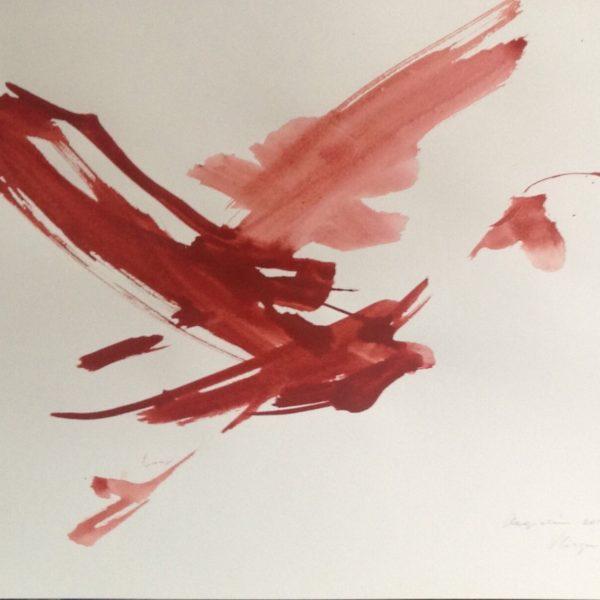 Red ibises